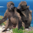 saintvaast4 avatar image