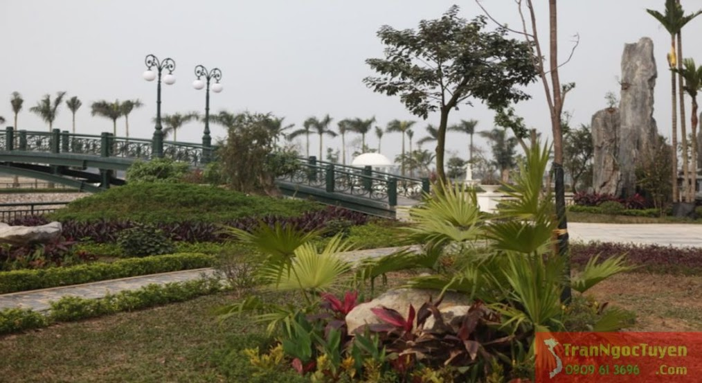 Cầu đi dạo qua hồ trung tâm biệt thự Vườn Cam