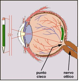 Sapientemente punto cieco cos 39 come determinare il for Punto p esterno alla circonferenza