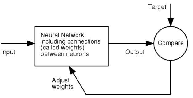 neural engineering essay