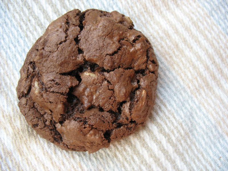 Chewy Chocolate Walnut Cookie Recipe