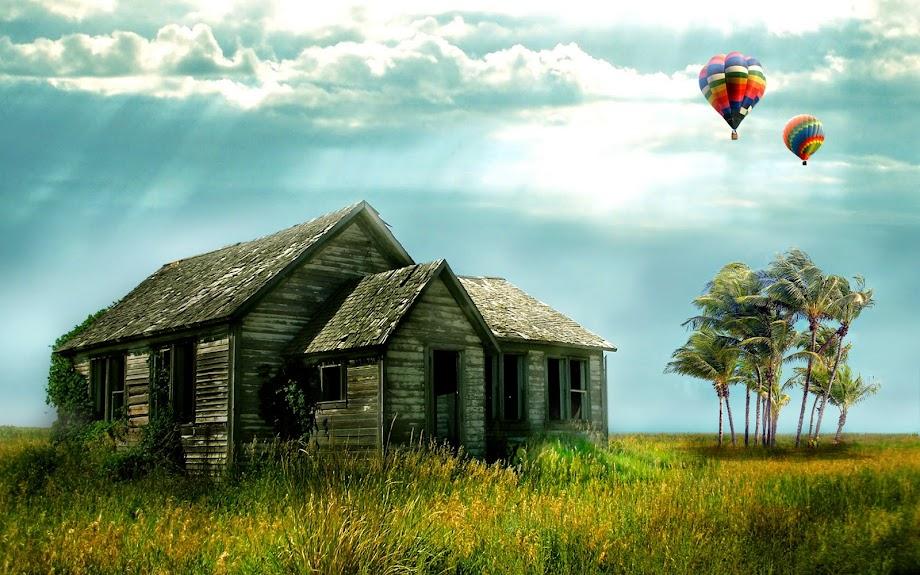 house Khi cơ hội đến thì bạn hãy thật tập trung mà nắm lấy