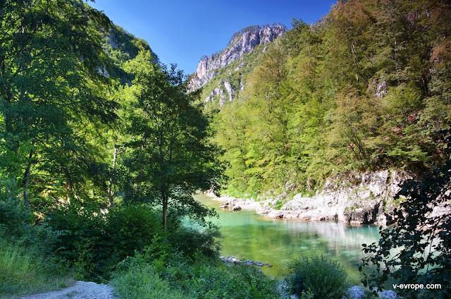 горная река в Черногории