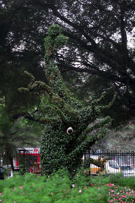 Dragon head topiary, Temple of Literature
