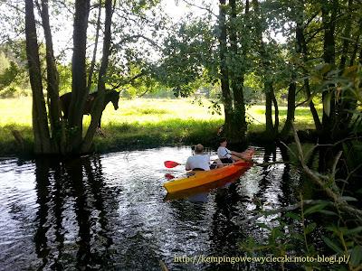 Spływ kajakowy Czernica