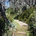 Erosion Control on Merrits Nature Track (276206)