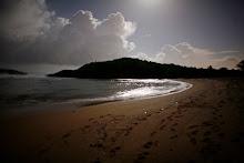 Orilla de la playa durante la noche.