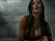 brunettes women cleavage models wet elisabetta gregoraci wet clothing 1600x1200 wallpaper