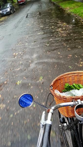 Grocery basket on the front of DarkEm's rain-soaked bike.