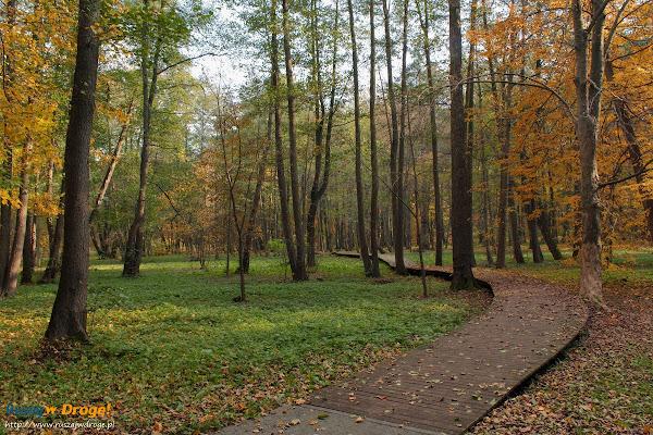 Wejherowo - Park Miejski im. Aleksandra Majkowskiego
