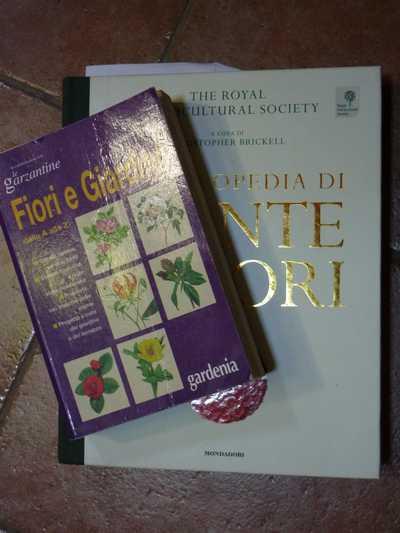 Cominciamo bene libri base fondamentali sul for Giardinaggio e fiori