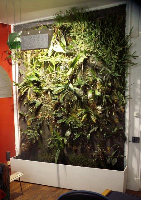 Mur végétal intérieur. 005