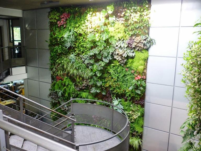 Mur Vgtal Intrieur Installation De Murs Vgtaux En Intrieur Sphaigne