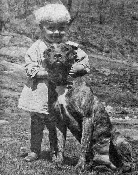 Um cão babá e um bebê