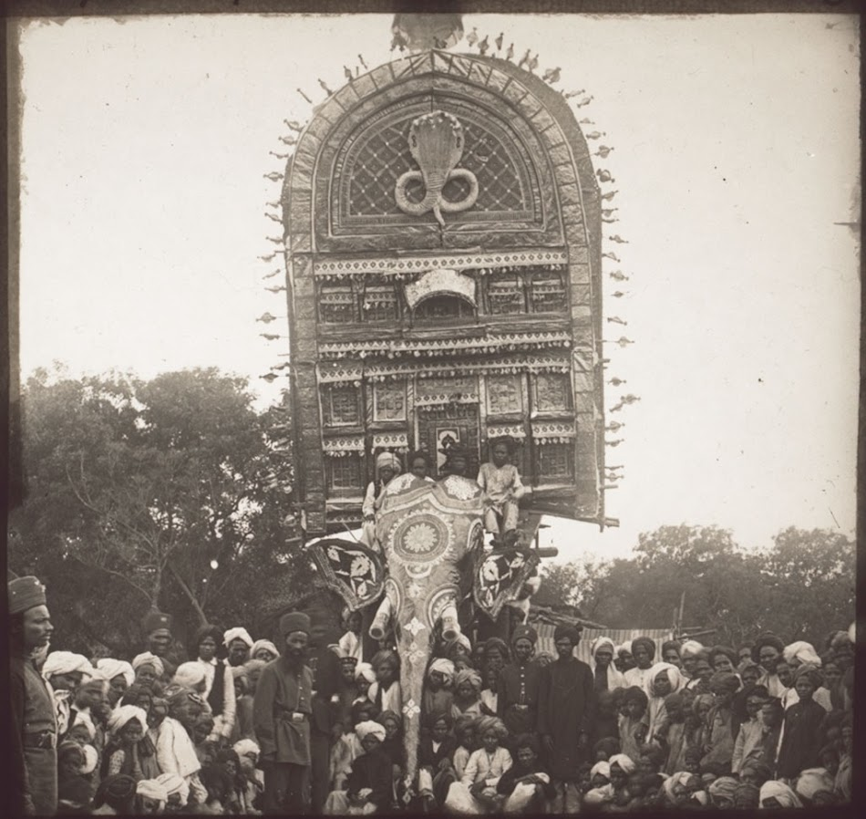 Indian temple elephant in a procession  Festival in honour of the