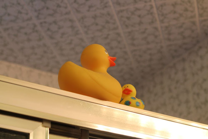 two rubber duckies on top of the shower doors