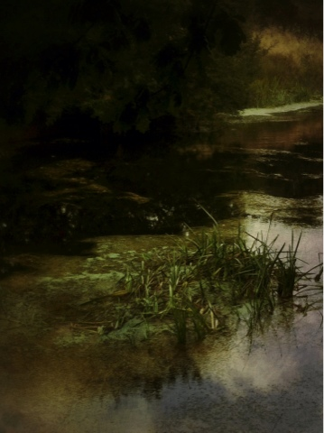 iphoneography iphoneart landscape Photo pictorialism