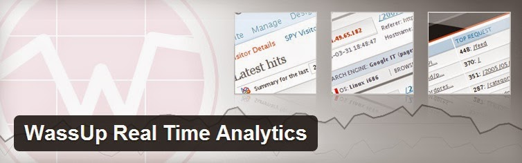 wassup real time analytics plugin