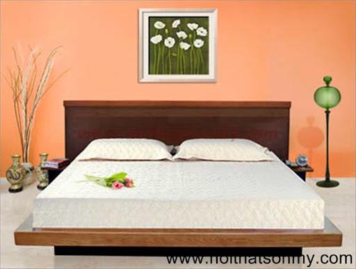 Giường ngủ gỗ kiểu nhật-1