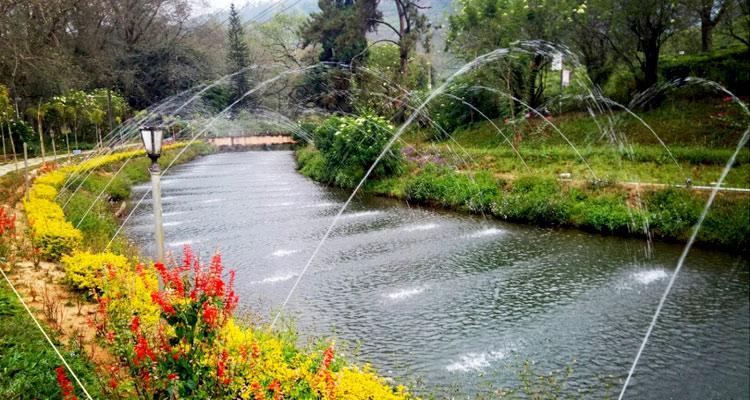 Image result for Blossom International Park images