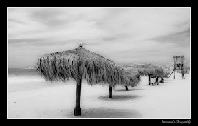 Black and White Photography, speechless  San Jose de los Cabos, Mexico