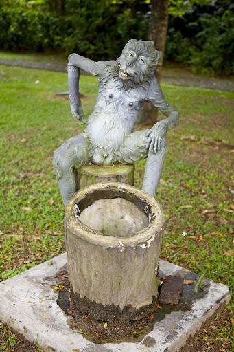 Мајмуноканта