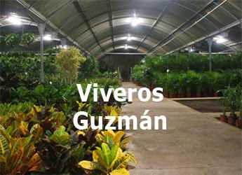 Viveros Guzmán Alhaurín