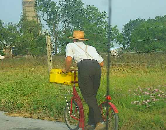 Amish en trottinette