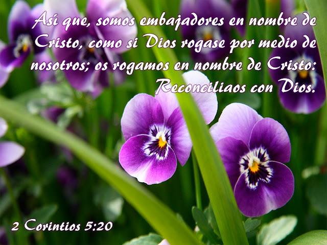 2 Corintios 5.20