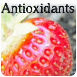 Strawberry Antioxidants Berries Polyphenol Reference