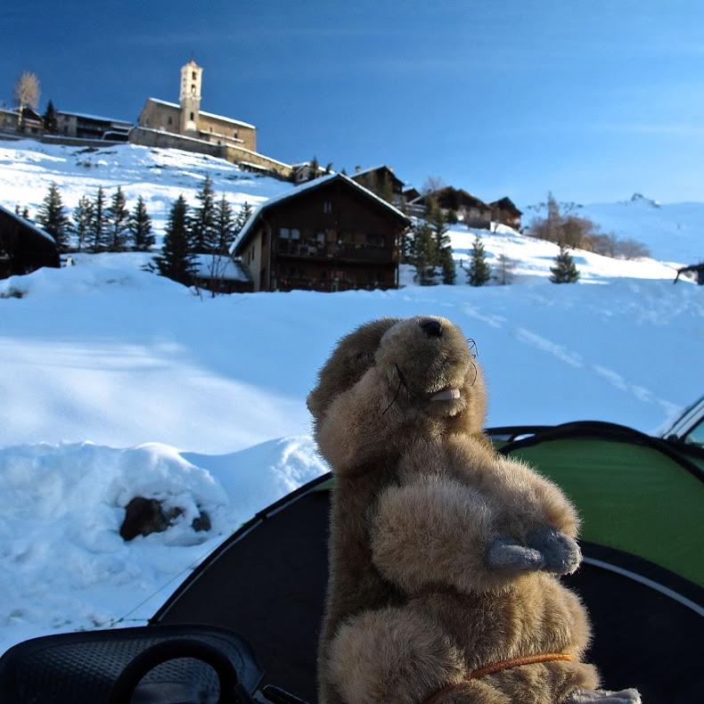 Les Marmottes 2013