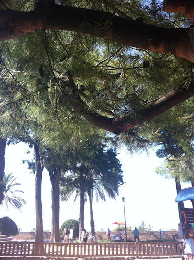 Day out in Palma part 2