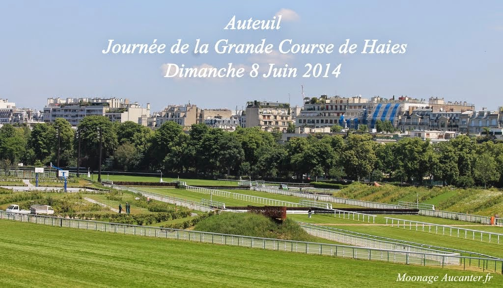 Photos Auteuil 8-06-2014  IMG_1509