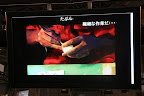 【雑記】現在フィギュアのリアルタイム制作実況中 2日目はリアルタイムで塗装作業
