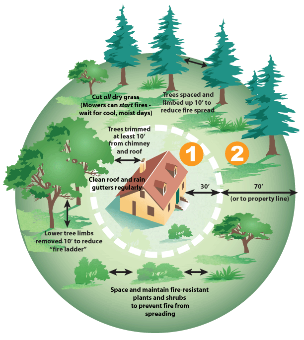 Defensible Space - Woodside Fire Protection District