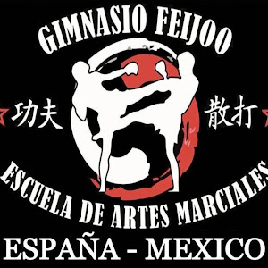 Who is Gimnasio Feijoo Mexico?