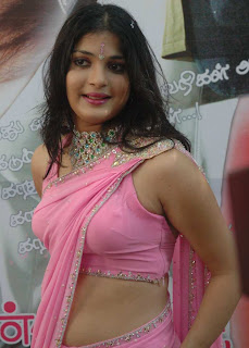 Tamil Actress Nicole in Pink Saree