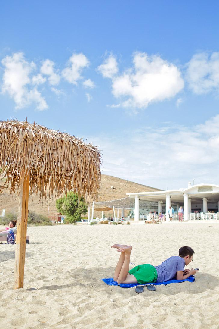 ελιά Mykonos Beach.