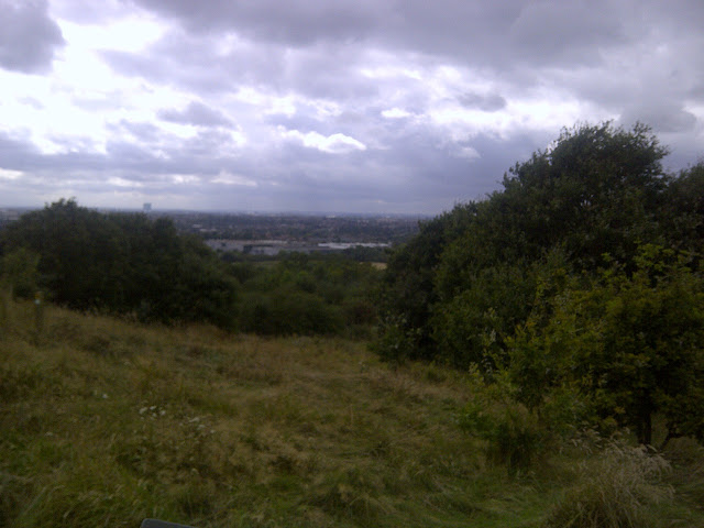 The view south from Horsenden Hill