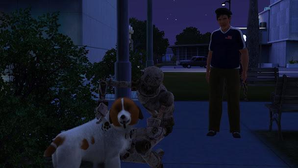 симбот ухаживает за собакой