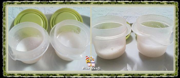 Gordura de coco caseira 1
