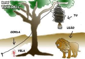 Imagine uma árvore, uma corda, uma vela, um leão e você