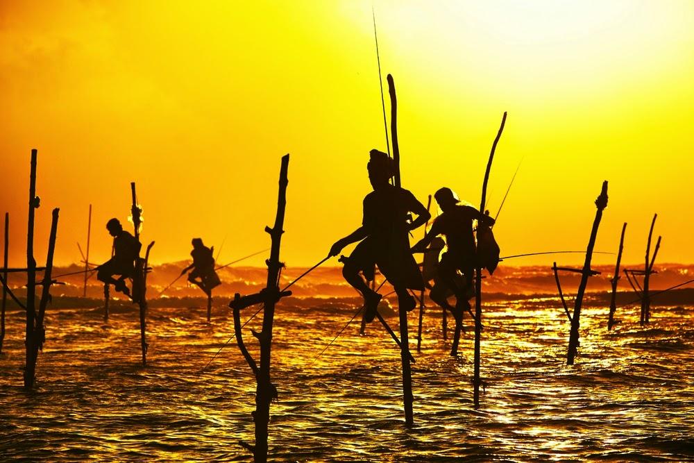 Stilt Fishing, traditional fishermen Silhouettes art in Sri Lanka