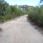 Currie Rd Service trail (127276)