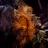 Andrea Downes avatar image