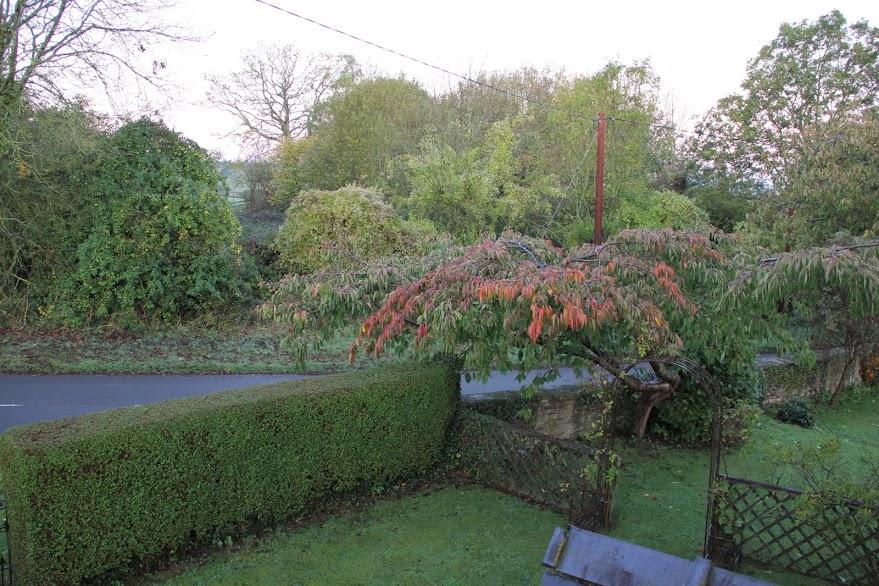 2011年10月 子連れ英国紀行(その15:7日目 旅のハイライトは農場で。一生忘れません。)