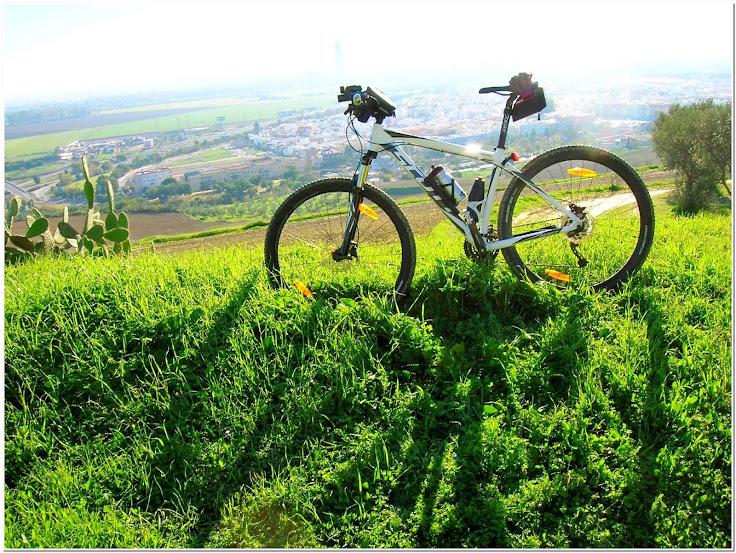 Rutas en bici. - Página 21 Jabugo%2B001