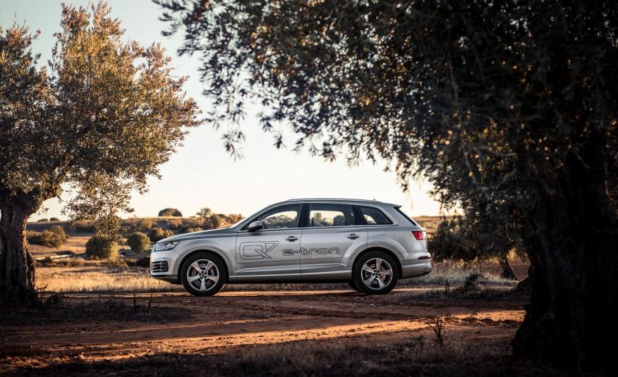 Trong phân khúc SUV cỡ lớn, Audi Q7 là bậc thuộc hàng chiếu trên