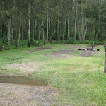 Camping area at Bungaree Bay
