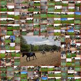 Multisports Toussaint 2013